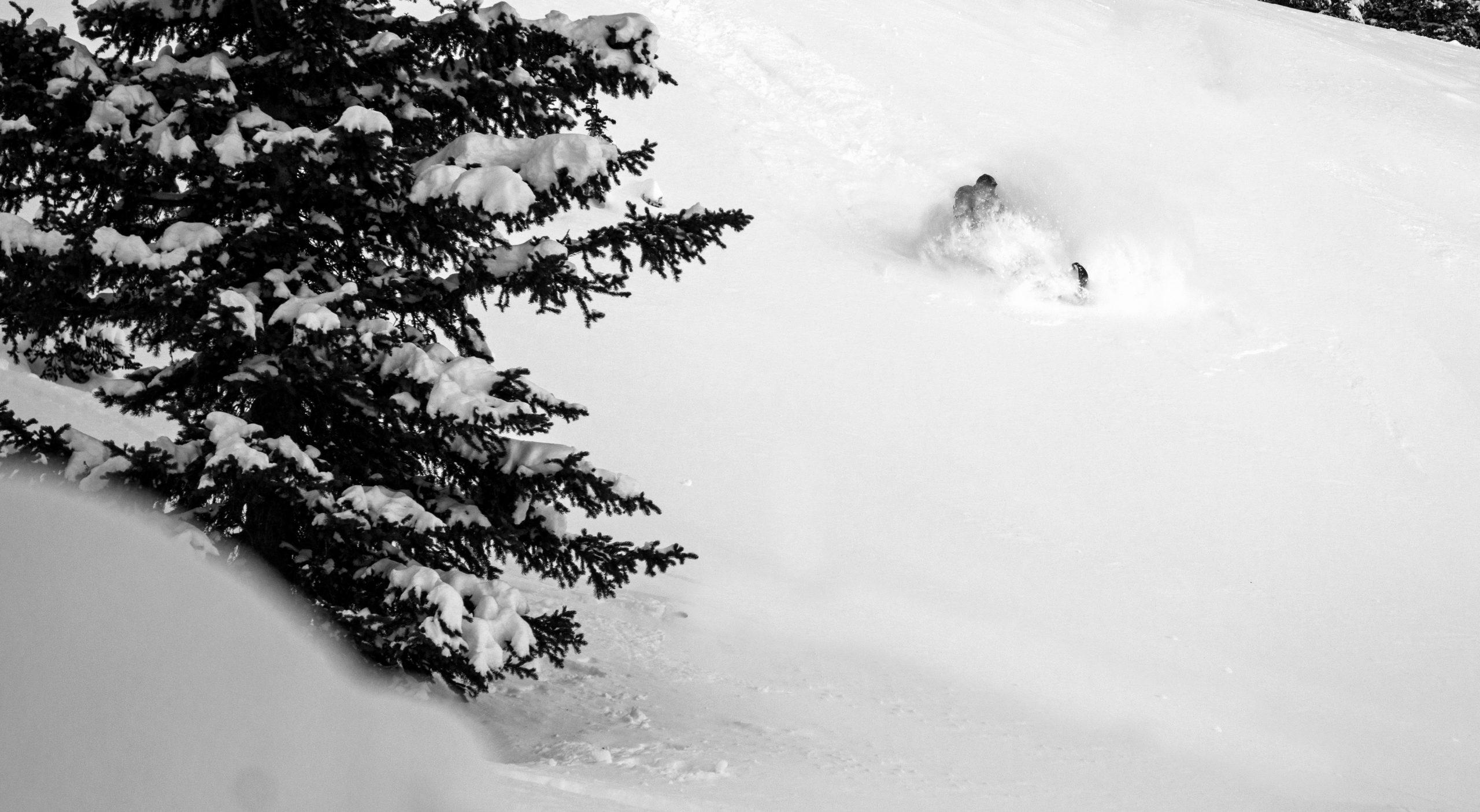 North_sled